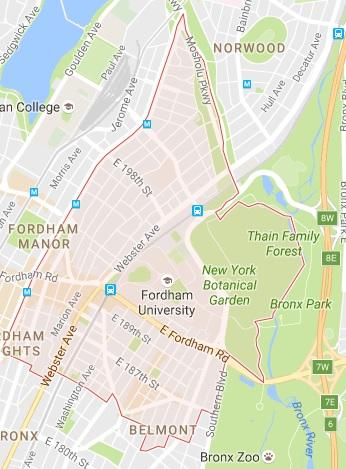 10458 Tree Service - Bronx 10458 Tree Service