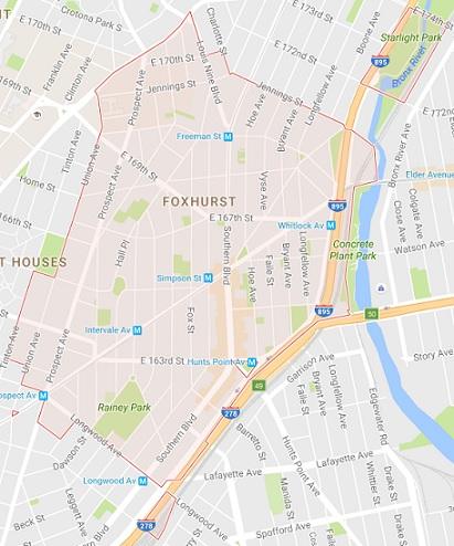 10459 Tree Service - Bronx 10459 Tree Service