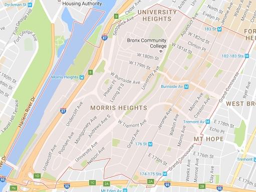 10453 Tree Service - Bronx 10453 Tree Service