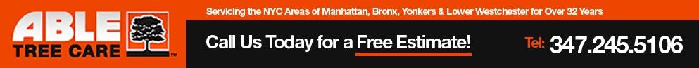 Manhattan 10001 Tree Service Company